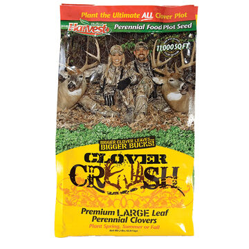 Evolved Clover Crush Food Plot Seed