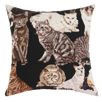Moosehead Balsam Fir 5 x 5 Large Cats Balsam Pillow