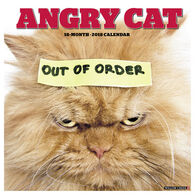 Willow Creek Press Angry Cat 2018 Wall Calendar