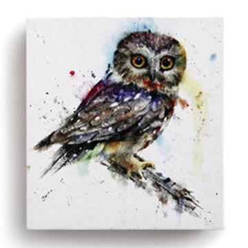 Big Sky Carvers Owl Adhesive Notes