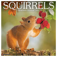 Willow Creek Press Squirrels 2021 Wall Calendar