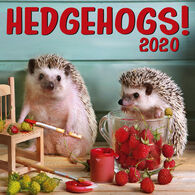 Hedgehogs 2020 Wall Calendar by Zebra Publishing