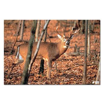 Delta McKenzie Tru-Life Paper Archery Target