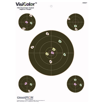 Champion VisiColor High-Visibility Paper Target - 10 Pk.