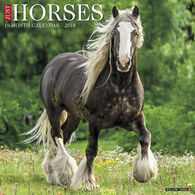 Willow Creek Press Just Horses 2018 Wall Calendar