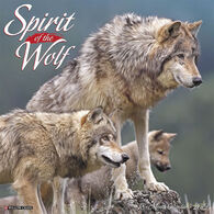 Willow Creek Press Spirit of the Wolf 2019 Wall Calendar