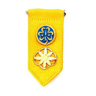 Girl Scouts Official Daisy Insignia Tab