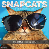 Willow Creek Press Snapcats 2021 Wall Calendar