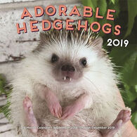 Adorable Hedgehogs 2019 Wall Calendar by Carolyn Parker, Editors Of Rock Point
