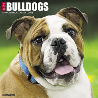 Willow Creek Press Just Bulldogs 2018 Wall Calendar