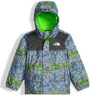 The North Face Toddler Boys' Tailout Jacket