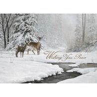 LPG Greetings Deer and Stream in Winter Boxed Christmas Cards