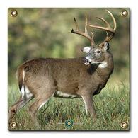 Arrowmat Big Buck Target Face