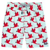 Tom & Teddy Men's Light Blue & Pink Parrots Boardshort