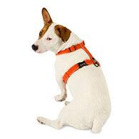 Planet Dog Cozy Hemp Dog Harness