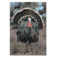 Delta McKenzie Full Strut Turkey Paper Archery Target