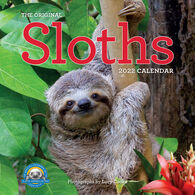 The Original Sloths 2022 Wall Calendar by Lucy Cooke