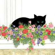 Paperproducts Design Black Cat Flower Box Beverage Napkin