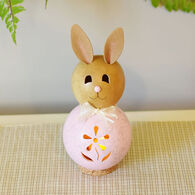 Meadowbrooke Gourds Natalie Miniature Pink Bunny Gourd