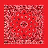 Springs Creative/Carolina Women's Traditional Paisley Bandana