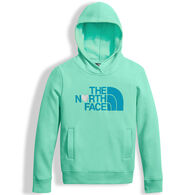 The North Face Girl's Logowear Pullover Hoodie