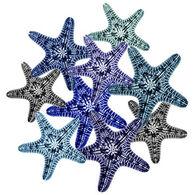 Radiant Art Starfish Medley 8 x 10 Tile
