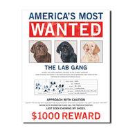Desperate Enterprises Wanted Lab Gang Tin Sign