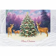 Pumpernickel Press Christmas Deer Deluxe Boxed Greeting Cards