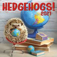 Hedgehogs 2021 Wall Calendar by Zebra Publishing