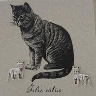 Semaki & Bird, Ltd. Women's Sterling Silver Cat Earring