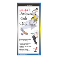 Sibley's Backyard Birds of the Northeast: FoldingGuides