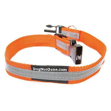 Dog Not Gone Reflective Safety Dog Collar