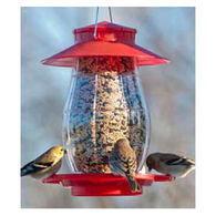 Audubon Lantern Bird Feeder