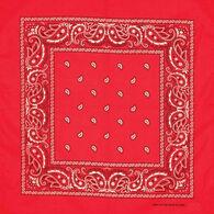 Artex Men's & Women's Red Paisley Bandana