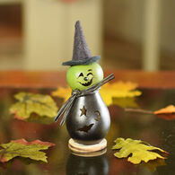 Meadowbrooke Gourds Lil Fiona Witch Gourd