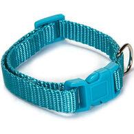 Zack & Zoey Nylon Dog Collar
