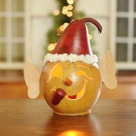 Meadowbrooke Gourds Bernard Small Lit Elf Head Gourd