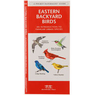 Eastern Backyard Birds by James Kavanagh