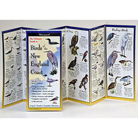 Birds of the New England Coast: FoldingGuides