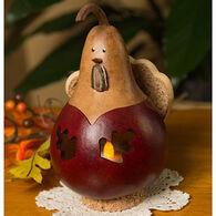 Meadowbrooke Gourds Lyden Turkey Gourd
