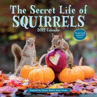 The Secret Life of Squirrels 2022 Wall Calendar by Nancy Rose