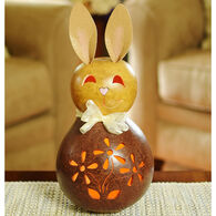 Meadowbrooke Gourds Chester Medium Lit Bunny Gourd