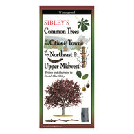 Sibley's Common Trees in the Cities & Towns of the Northeast & Upper Midwest: FoldingGuides