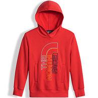 The North Face Boy's Logowear PO Hoodie