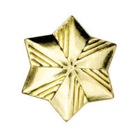 Girl Scouts Official Membership Star