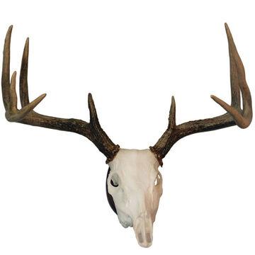 Hunters Specialties Euro Skull Antler Mounting Kit
