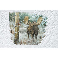 Pumpernickel Press Close Encounters Deluxe Boxed Greeting Cards