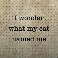 Paisley & Parsley Designs I Wonder What My Cat Named Me Marble Tiles Coaster