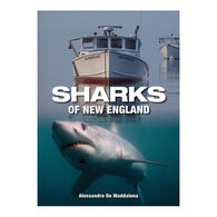 Sharks of New England by Allesandro De Maddalena