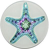 Radiant Art Green Pink Starfish Ornament